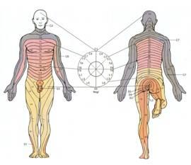 akupunktur2000