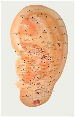 nadaakupunkturpunkternaiörat